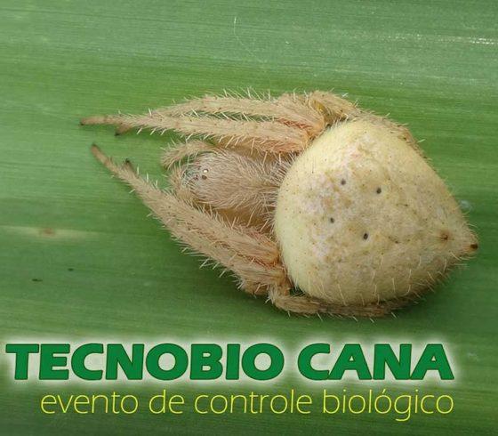 Grupo de Pesquisa e Extensão em Controle Biológico